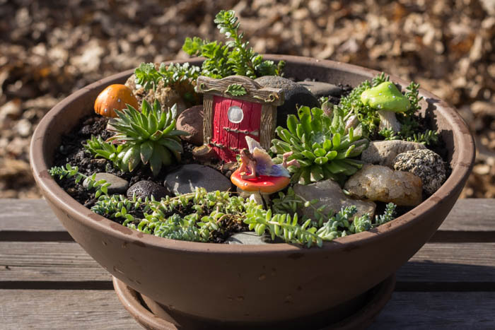 Make Your Own Fairy Garden Frame Of View